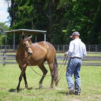 Horses Helping Humans Workshops 102- Private Event