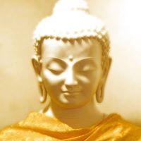 Deepening Your Practice  Meditation Level II 6 Week Series