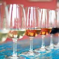 Wine tasting evening- Wines under a tenner 15