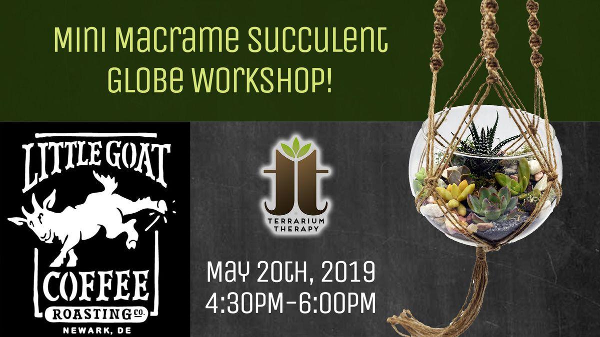 Mini Macrame Succulent Globe Workshop at Little Goat Coffee Roasting