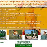 Fiesta de despedida de las aves migratorias (Salamanca).