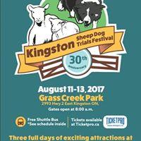 Craft Dog Attending - Kingston Sheepdog Trials