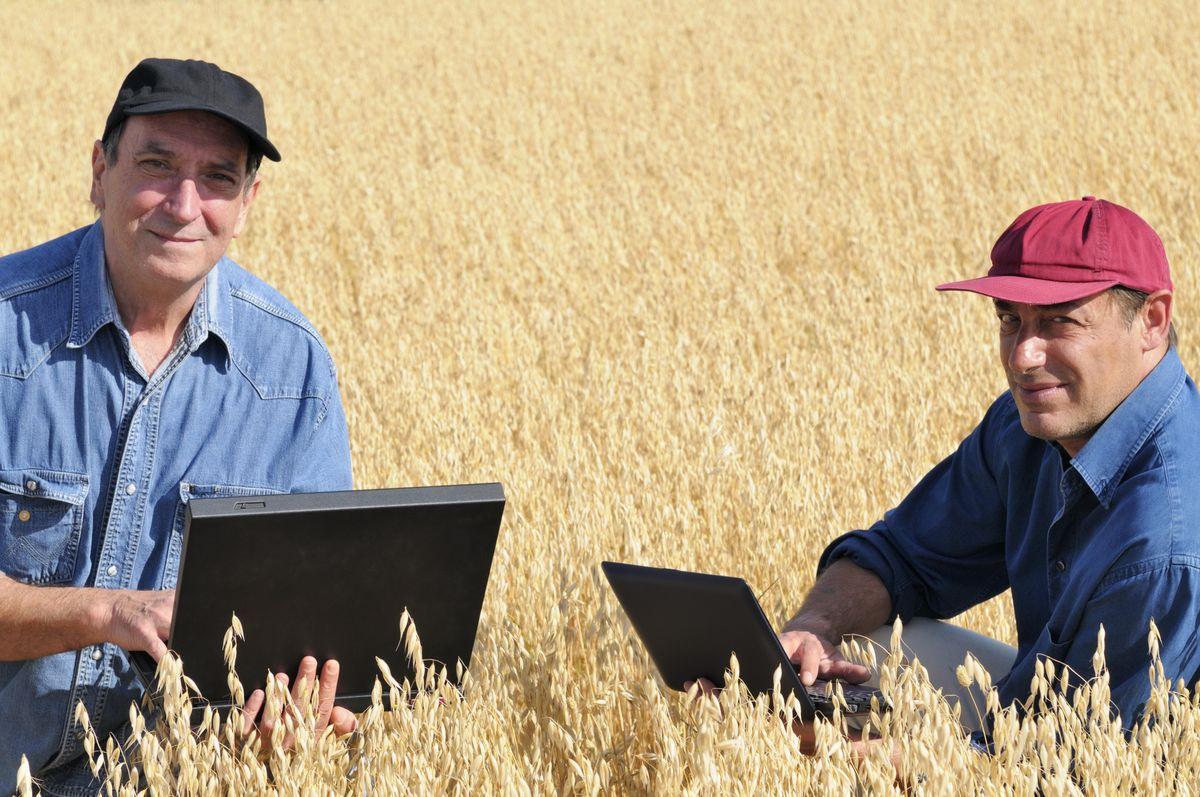 Farm Business Succession & Estate Planning Rochester