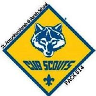 Cub Scouts - Pack 614