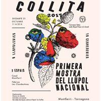 Collita 2017
