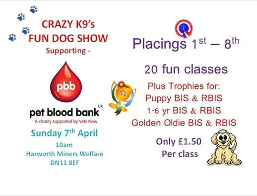 In Aid Of Pet Blood Bank Fun Dog Show