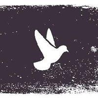 Peace Team Training - Washtenaw County
