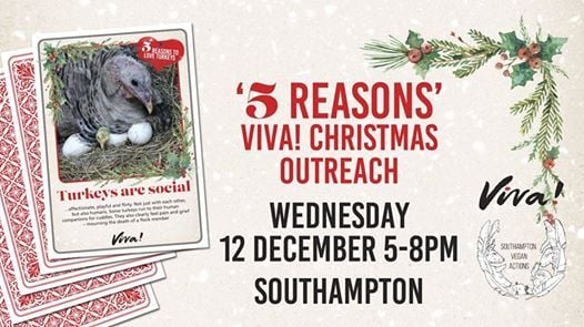 5 Reasons Viva Christmas Outreach