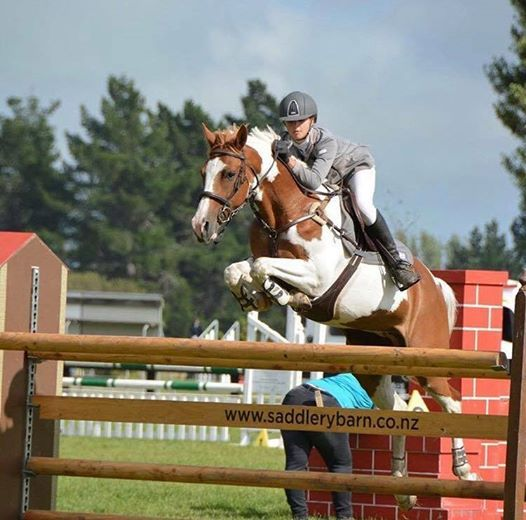 Winter Show Hunter and Show Jumping Championship series.