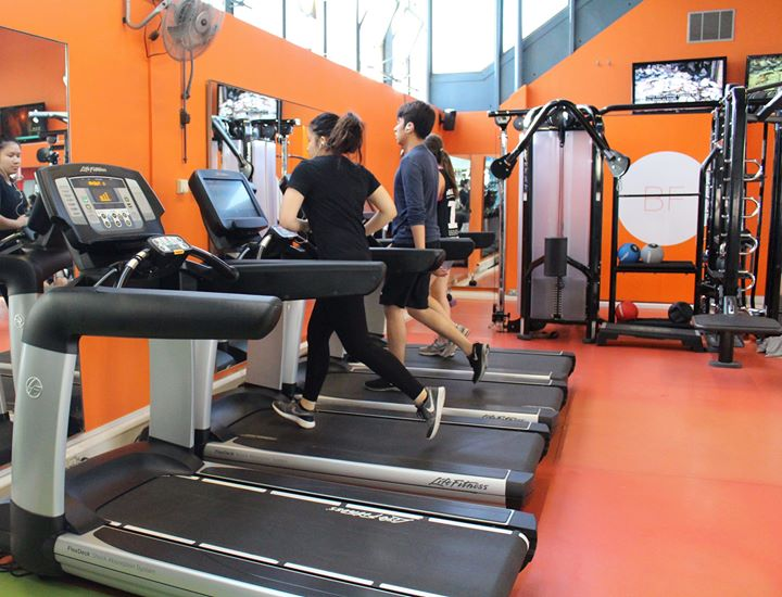 Bloomsbury Fitness Open Day