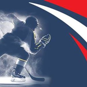 Fargo squirt torneo di hockey
