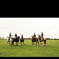 SJ Schooling  Murton Equestrian Centre