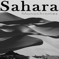 Vernissage Sahara - Monochromes au Bal des Fringants