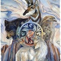 What is your Animal Totem with Carrie Chilcott