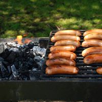 Summer picnic at Alice Holt Forest