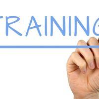 SILKAllies Montreal Facilitator Training
