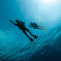 Tioman Open Season Dive