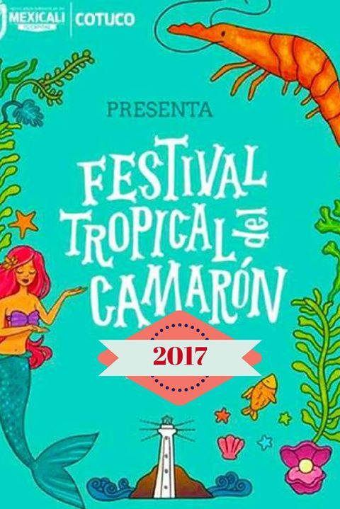 Resultado de imagen para festival del camaron 2017 san felipe