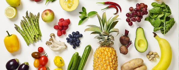 BSc Dietetics Career Day