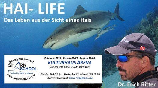 HAI  LIFE Das Leben aus der Sicht eines Hais