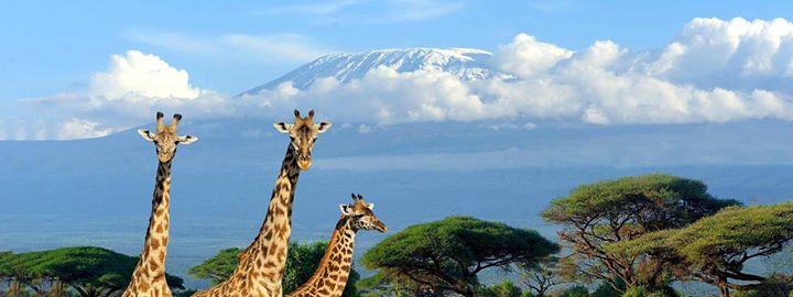 Mount Kilimanjaro climbing trips budget travel deals