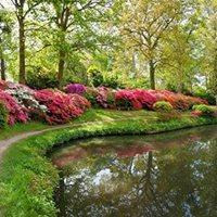 Exbury Gardens Hampshire