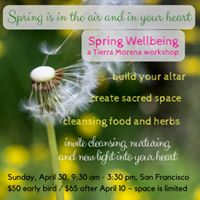 Spring Wellbeing Workshop
