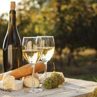 Wine and Cheese - Bonne anne Jeunes Professionnels