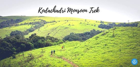 Kodachadri Monsoon Trek  Plan The Unplanned