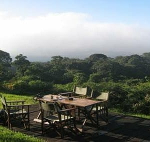 Day Hike To Mt. Kenya Castle Lodge Forest