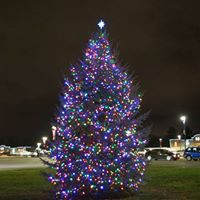 Annual Holiday Tree Lighting Ceremony