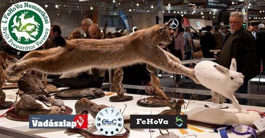 I. FeHoVa International Open Taxidermy Championship