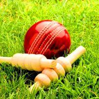 Udaipur Cricket League- 2017