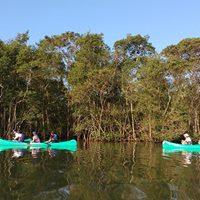 Canoagem Ecolgica no Manguezal