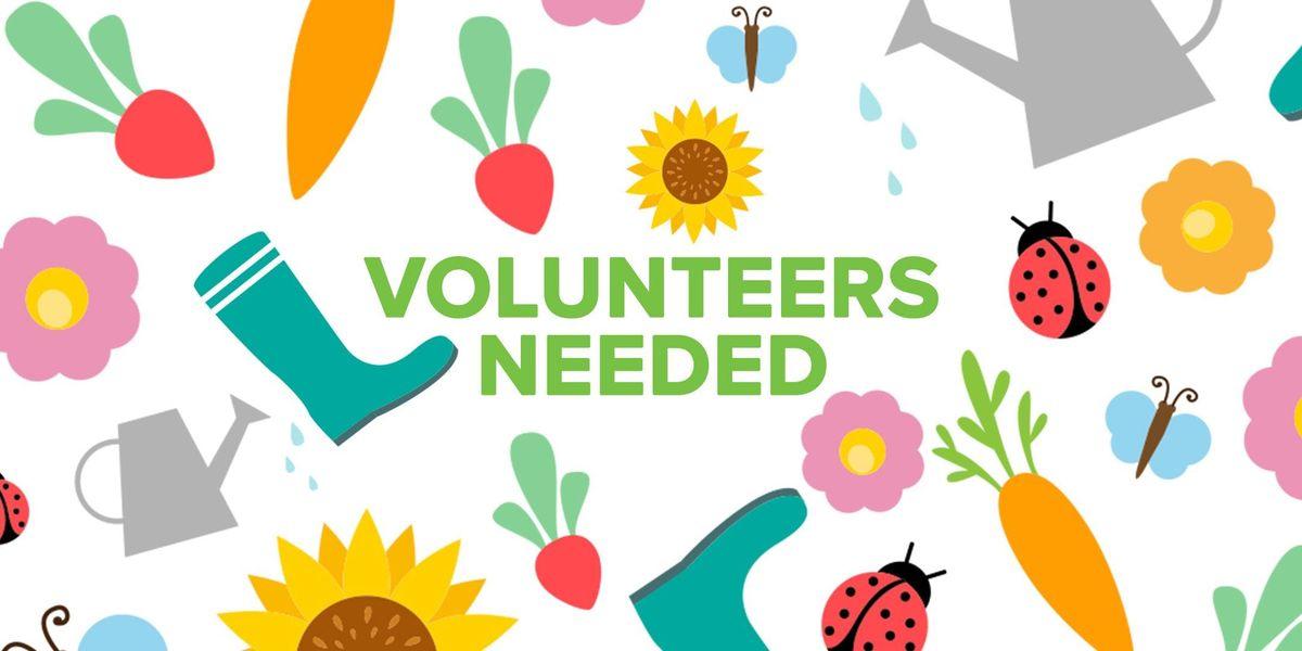 Volunteers Needed Adult Mental Health Services Garden Planting 1 12