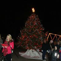 The Annual Chamberlin Park Christmas Festival &amp Tree Lighting Ceremony