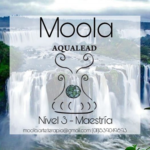 Aqualead Nivel 3 - Maestra (CUPOS COMPLETOS)