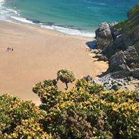 Pembroke Summer Holiday 11 Aug