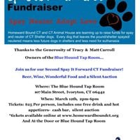 Spay It Forward CT Fundraiser