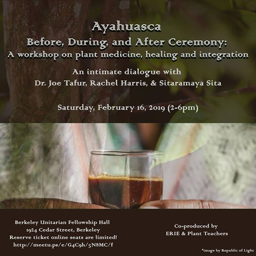 Ayahuasca Before During & After Ceremony