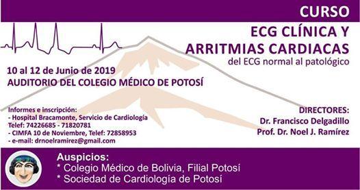 Curso ECG Clínica y Arritmias Cardiacas at Potosí, Bolivia