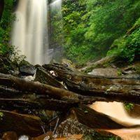 In search of the Falls Kudachadri