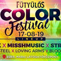 Color Festival 2017 - Eger