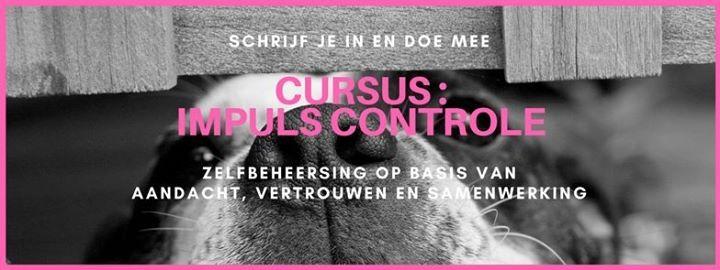 Cursus Impuls controle - start vr 15-10 1915