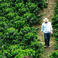 1st Tour to Coffee Growing Region in Colombia TBA