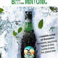 Brrr Mintonic