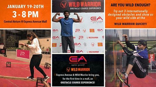 Wild Warrior Obstacle Course Experience