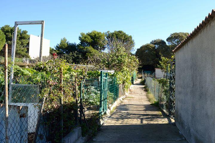 D ambulations aux maurettes des jardins ouvriers aux for Entretien jardin istres