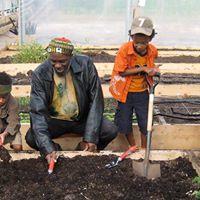 Garden Basics Workshop