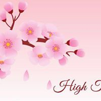 V Clubs  High Tea in Spring